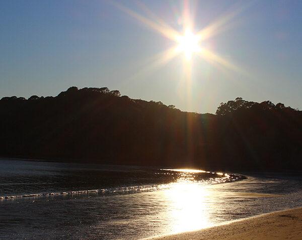 Whangaparaoa-beach