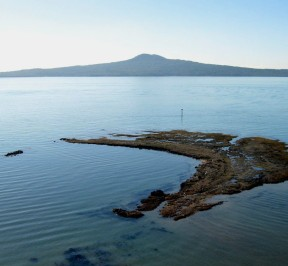 Rangitoto_from_Achilles_Point